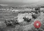 Image of 1st Cavalry Division United States USA, 1942, second 55 stock footage video 65675063121