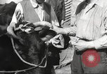 Image of Jews Dombrowa Poland, 1940, second 38 stock footage video 65675063125