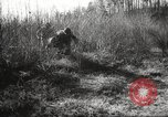 Image of clearing path United States USA, 1946, second 50 stock footage video 65675063130