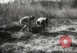 Image of clearing path United States USA, 1946, second 52 stock footage video 65675063130