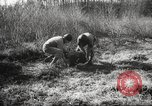 Image of clearing path United States USA, 1946, second 53 stock footage video 65675063130