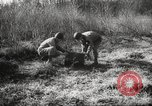 Image of clearing path United States USA, 1946, second 54 stock footage video 65675063130