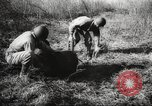 Image of clearing path United States USA, 1946, second 55 stock footage video 65675063130