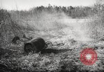 Image of clearing path United States USA, 1946, second 59 stock footage video 65675063130