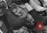 Image of victims of Nazi and Japanese atrocities in World War 2 Europe, 1945, second 10 stock footage video 65675063143