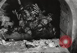 Image of victims of Nazi and Japanese atrocities in World War 2 Europe, 1945, second 22 stock footage video 65675063143