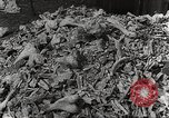 Image of victims of Nazi and Japanese atrocities in World War 2 Europe, 1945, second 23 stock footage video 65675063143