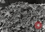 Image of victims of Nazi and Japanese atrocities in World War 2 Europe, 1945, second 24 stock footage video 65675063143