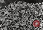 Image of victims of Nazi and Japanese atrocities in World War 2 Europe, 1945, second 25 stock footage video 65675063143