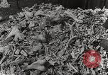 Image of victims of Nazi and Japanese atrocities in World War 2 Europe, 1945, second 26 stock footage video 65675063143