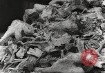 Image of victims of Nazi and Japanese atrocities in World War 2 Europe, 1945, second 27 stock footage video 65675063143