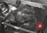 Image of liberated people Europe, 1946, second 35 stock footage video 65675063145