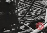 Image of war victims Europe, 1946, second 11 stock footage video 65675063147