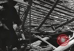 Image of war victims Europe, 1946, second 13 stock footage video 65675063147