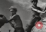 Image of war victims Europe, 1946, second 15 stock footage video 65675063147