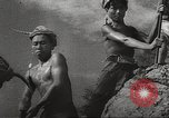 Image of war victims Europe, 1946, second 16 stock footage video 65675063147