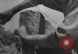 Image of war victims Europe, 1946, second 26 stock footage video 65675063147