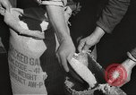 Image of war victims Europe, 1946, second 36 stock footage video 65675063147