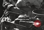 Image of war victims Europe, 1946, second 44 stock footage video 65675063147