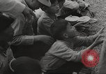 Image of war victims Europe, 1946, second 32 stock footage video 65675063148
