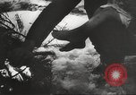Image of war victims Europe, 1946, second 3 stock footage video 65675063149