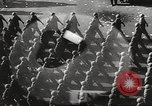Image of war victims Europe, 1946, second 47 stock footage video 65675063149