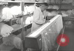 Image of manufacture of German Army parachutes World War 2 Germany, 1939, second 59 stock footage video 65675063156