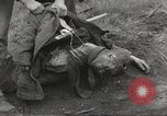 Image of Flossenbürg concentration camp atrocity victims Flossenburg Germany, 1945, second 20 stock footage video 65675063167