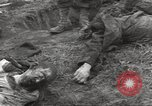Image of Flossenbürg concentration camp atrocity victims Flossenburg Germany, 1945, second 38 stock footage video 65675063167