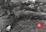 Image of Flossenbürg concentration camp atrocity victims Flossenburg Germany, 1945, second 39 stock footage video 65675063167