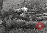 Image of Flossenbürg concentration camp atrocity victims Flossenburg Germany, 1945, second 40 stock footage video 65675063167