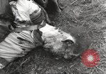 Image of Flossenbürg concentration camp atrocity victims Flossenburg Germany, 1945, second 43 stock footage video 65675063167