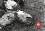 Image of Flossenbürg concentration camp atrocity victims Flossenburg Germany, 1945, second 44 stock footage video 65675063167