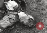Image of Flossenbürg concentration camp atrocity victims Flossenburg Germany, 1945, second 45 stock footage video 65675063167