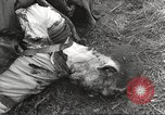 Image of Flossenbürg concentration camp atrocity victims Flossenburg Germany, 1945, second 47 stock footage video 65675063167