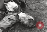 Image of Flossenbürg concentration camp atrocity victims Flossenburg Germany, 1945, second 49 stock footage video 65675063167