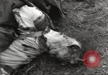 Image of Flossenbürg concentration camp atrocity victims Flossenburg Germany, 1945, second 51 stock footage video 65675063167