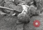Image of victims of Flossenbürg Concentration Camp Flossenburg Germany, 1945, second 26 stock footage video 65675063168