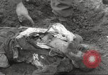 Image of victims of Flossenbürg Concentration Camp Flossenburg Germany, 1945, second 39 stock footage video 65675063168