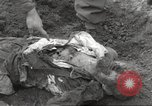 Image of victims of Flossenbürg Concentration Camp Flossenburg Germany, 1945, second 40 stock footage video 65675063168