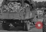 Image of displaced persons Wetzlar Germany, 1945, second 13 stock footage video 65675063173