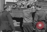 Image of displaced persons Wetzlar Germany, 1945, second 16 stock footage video 65675063173