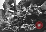Image of displaced persons Wetzlar Germany, 1945, second 30 stock footage video 65675063173
