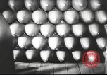 Image of German ammunition factory Germany, 1939, second 13 stock footage video 65675063183