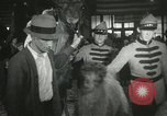 Image of baby camels Chicago Illinois USA, 1933, second 57 stock footage video 65675063205