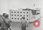 Image of American soldiers North Africa, 1943, second 61 stock footage video 65675063230