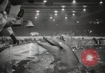 Image of National Sportsmen's Show Toronto Ontario Canada, 1965, second 51 stock footage video 65675063256
