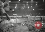 Image of National Sportsmen's Show Toronto Ontario Canada, 1965, second 53 stock footage video 65675063256