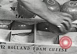 Image of farmlands Netherlands, 1940, second 24 stock footage video 65675063270