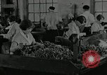 Image of America in World War 1 United States USA, 1918, second 59 stock footage video 65675063340
